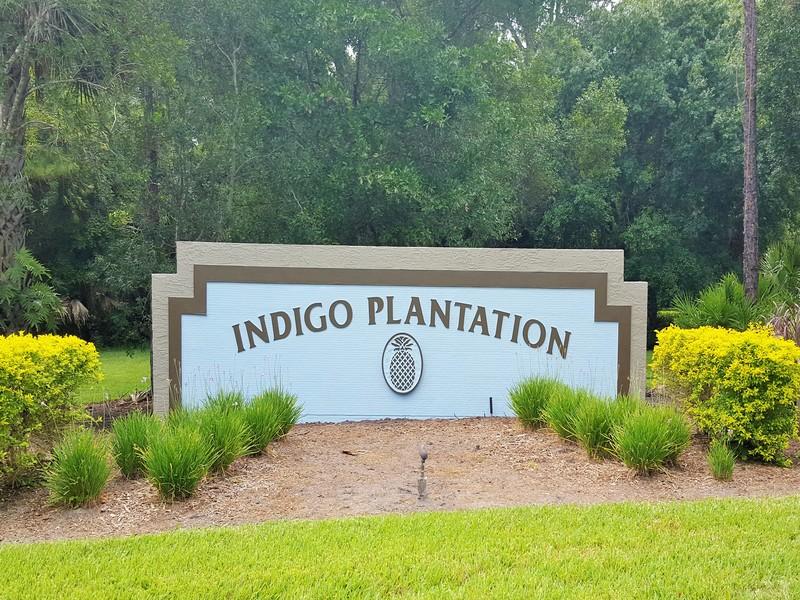 Indigo Plantation